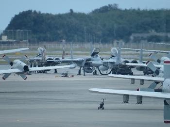 12_airplanes.jpg