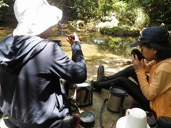 picnic01.jpg