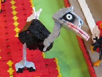 Common_ostrich.jpg